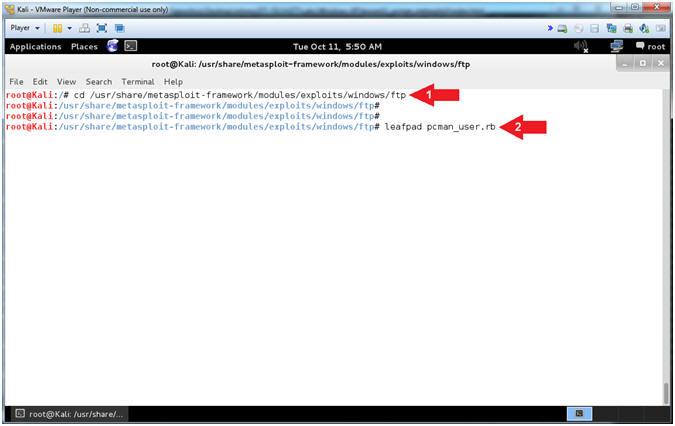 Buffer Overflow: Lesson 2: Create PCMan Metasploit Module