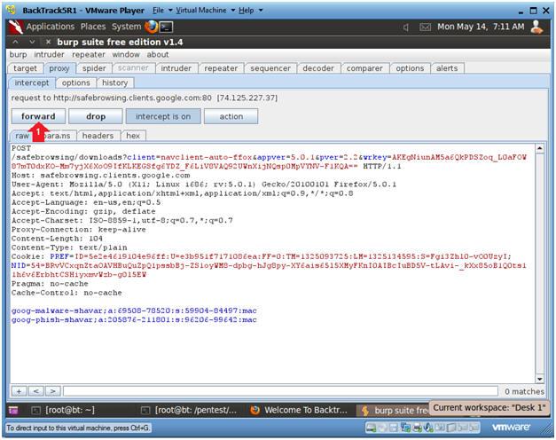 Damn Vulnerable Web App (DVWA): Lesson 11: Burp Suite, Man