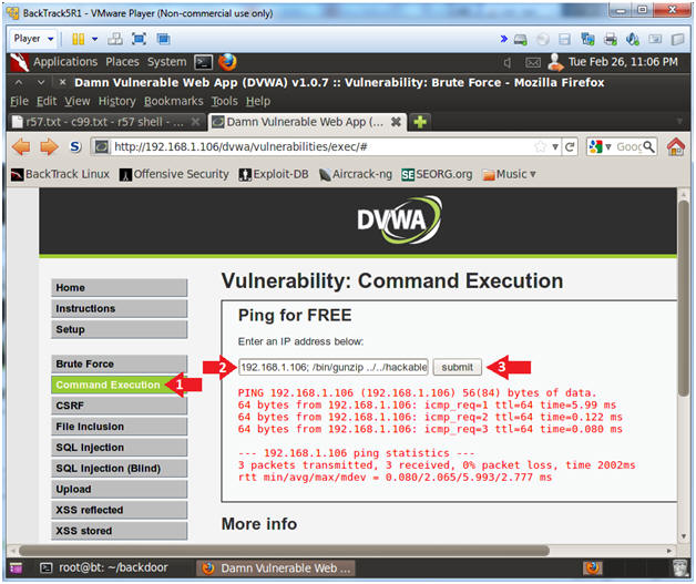 Damn Vulnerable Web App (DVWA): Lesson 14: Upload and use