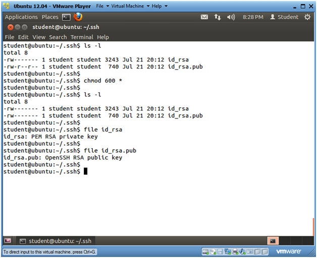 ssh-keygen ubuntu